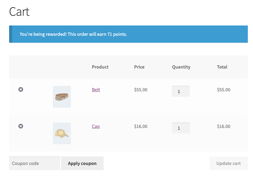 Loyalty Program Message In The WooCommerce Cart